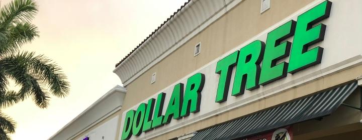 Six Dollar Store Essentials For DisneyTrip